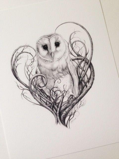 Barn Owl Print - Owls - Limited Edition Giclée Print - I Love British Animals Collection