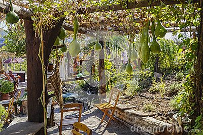 Restaurant garden in Rodhes city  , Rhodes Island, Greece . Europe.