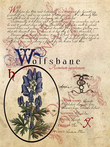 BOS ~ Wolfsbane page - Pinned by The Mystic's Emporium on Etsy