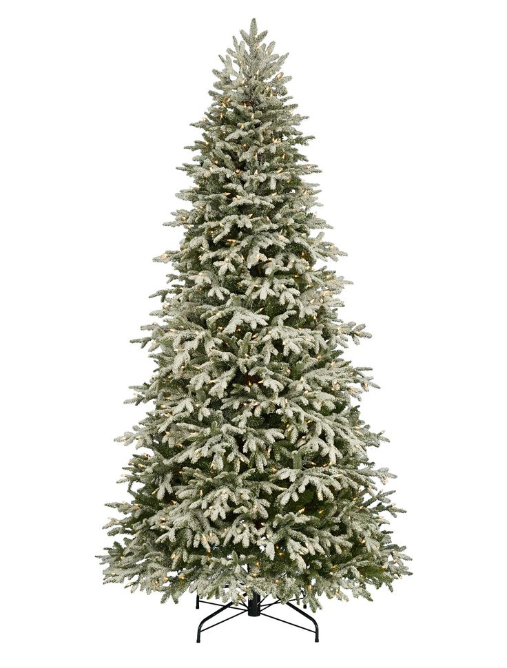 christmas tree hill nsw