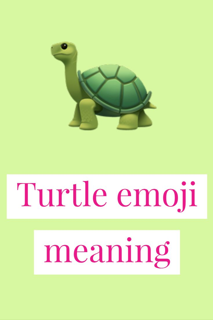 Turtle Emoji Emoji Slowest Animal Turtle