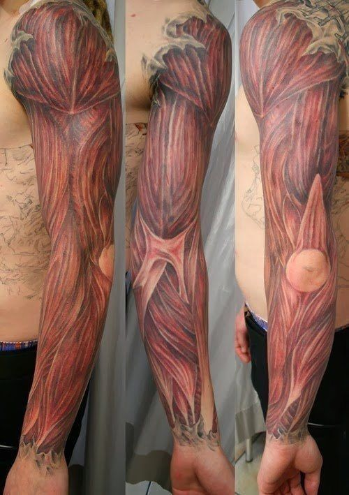 Realistic anatomy muscles tattoo on arm