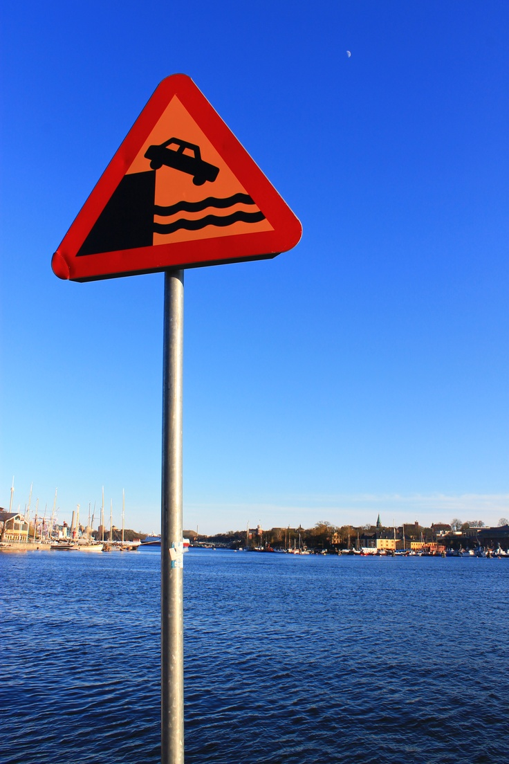 Watch out Stockholm swimmers!