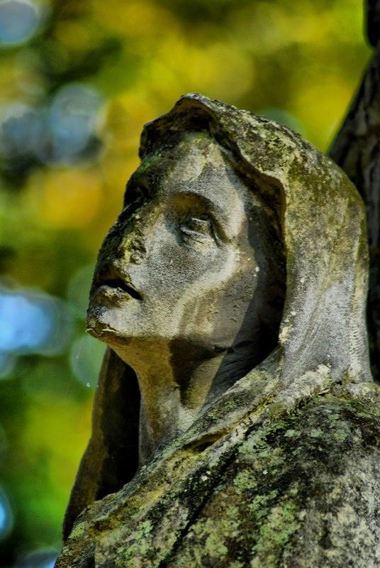 cemetery Sandomierz