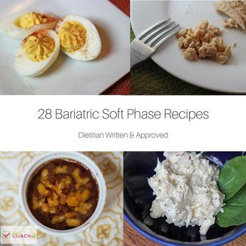 "If you are in the Pureed or Soft phase diet after Bariatric Surgery OR are preparing to be…these recipes are for you! By all means – please COMPARE your programs recommendations to the ingredients used in these recipes. Every program differs and it's best to follow your own surgeon's guidelines!! All recipes have been written by myself – … Continue reading ""Soft and Pureed Recipes After Bariatric Surgery"""