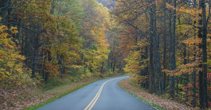 Checkout the Blue Ridge Parkway Road Trip on TripAdvisor. I can't wait to hit…
