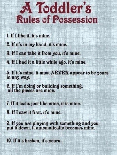 Toddlers: Possessive, Quotes, Kids Stuff, Sotrue, Funny Stuff, So True, Baby, The Rules, Toddlers Rules