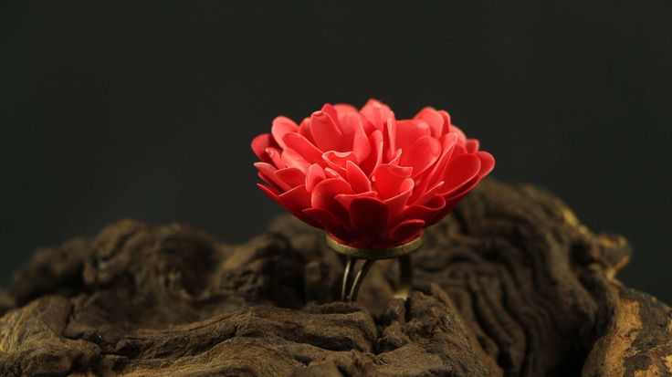 BARBAR RŮŽOVOUČKÝ Extravagantní prstýnek jen pro odvážné ženy. Nepřehlédnutelný a totálně nepraktický. Lístečková květinka cca 4 cm v průměru. Univerzální velikost prstýnku.