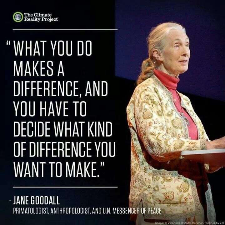 Jane Goodall Quotes: 73 Best PEOPLE I ADMIRE... Images On Pinterest