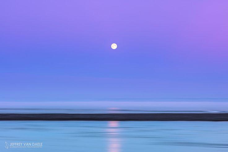 Icelandic Moonscape by Jeffrey Van Daele on 500px