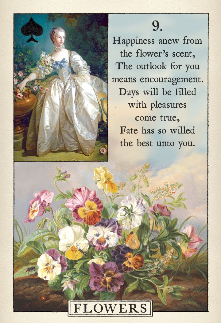 61 Best Coming Soon Images On Pinterest Oracle Cards