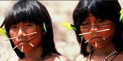 a comparison of the hopi tribe of the us and yanomami tribe of venezuela and brazil Peace and war in nonstate societies an  the indians of the eastern united states  noted for his depiction of the yanomamö of venezuela and brazil as.