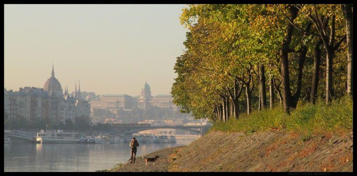 Budapest fotó: Margitsziget