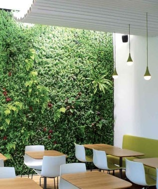 17 best images about interior work greenwall on for Jardines verticales interior