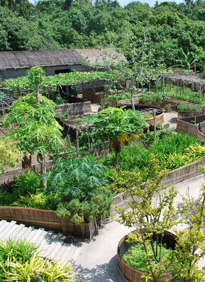 LA PERMACULTURE : UN ART DE VIVRE - Aujourd'hui à la mode, la permaculture est une méthode de jardinage respectueuse de la nature.