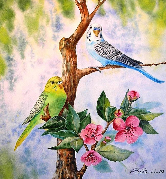 Valevskaya Valentina Mihaylovna. 'Two Parrot': Gorgeous Flowers, Animal Art, Poultry, Art, Illustration, Bird Art, Beautiful Birds, Валевская Валентина