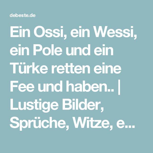 Ein Ossi, ein Wessi, ein Pole und ein Türke retten eine Fee und haben.. | Lustige Bilder, Sprüche, Witze, echt lustig