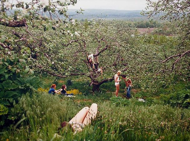 Justine Kurland- A nice look into the trees and then beyond.