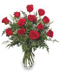 13 best valentines day images on pinterest florists flower anniversary flowers from flowers to go your local colorado springs co florist flower shop order anniversary flowers directly from flowers to go your mightylinksfo Choice Image