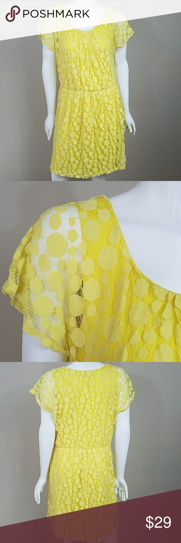 """Roz & Ali Yellow Dot Dress Roz & Ali Yellow Dot Dress.   Size 16.  Beautiful  yellow dot crochet overlays a solid yellow lining with plenty of stretch. Lace Overlay measures 21"""" across the bust.  37.5"""" long. Dress is 60% cotton, 4% nylon. Lining is 100% polyester. Roz & Ali Dresses"""