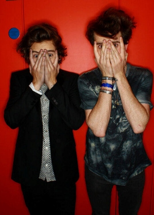 Harry Styles and Nick Grimshaw <3