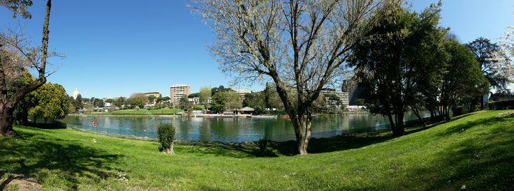 Parco Centrale del Lago, Rome.