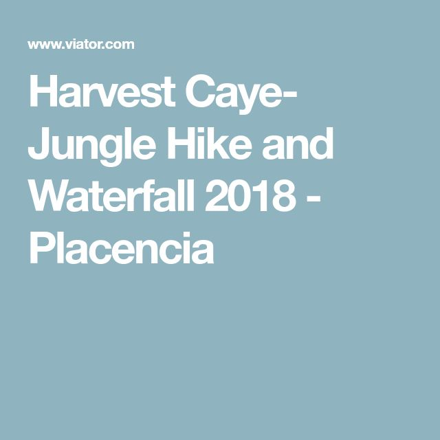 Harvest Caye- Jungle Hike and Waterfall 2018 - Placencia