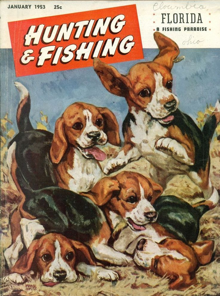 222 best images about vintage hunting and fishing magazine for Hunting and fishing magazine