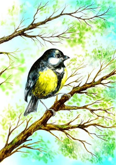 Bird Watercolour Painting from $34.99 | www.wallartprints.com.au #WatercolourArt #WallArtPrints