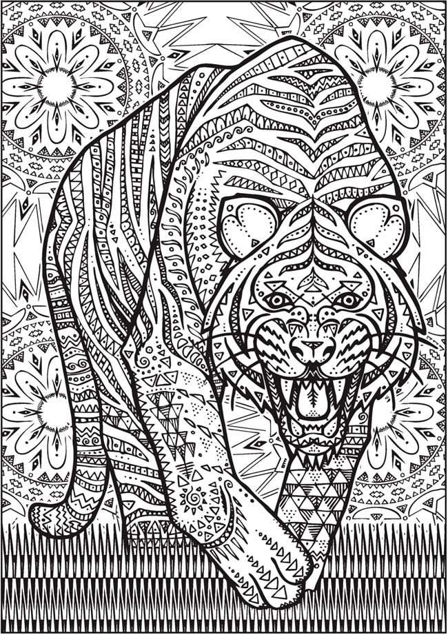 Creative Haven Untamed Designs Colouring Book - Page 7 of 7