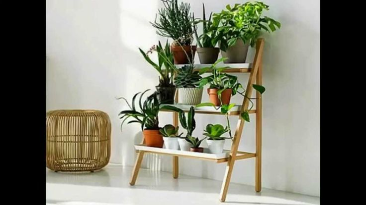 Indoor plant stands by camacoeshn.org