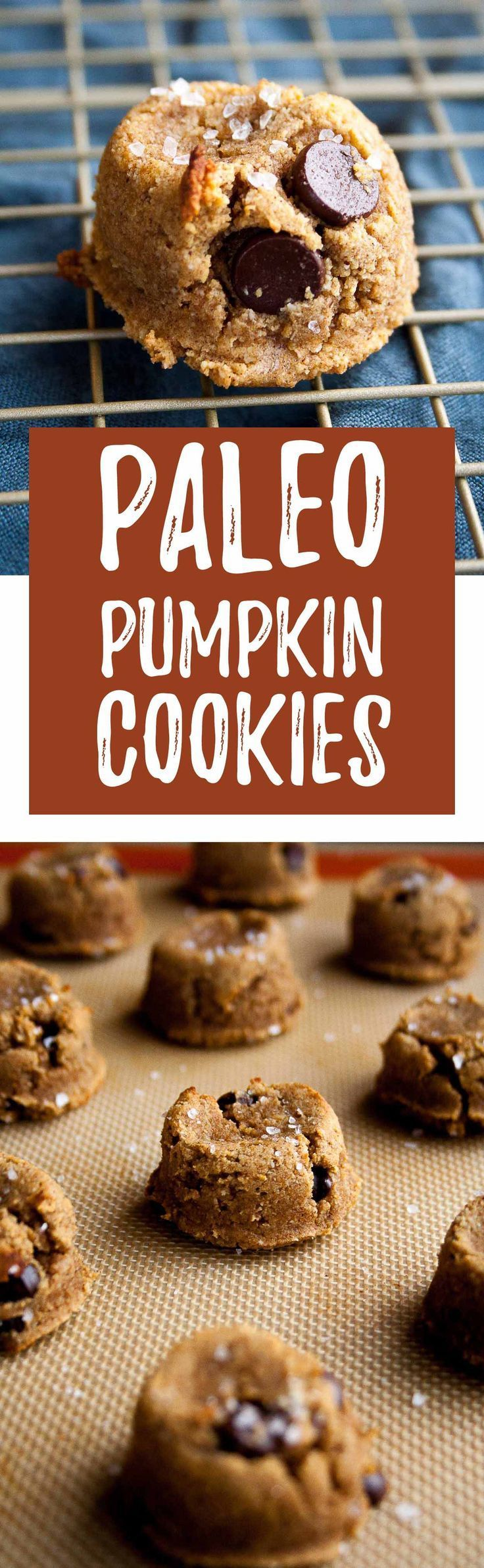 Paleo Pumpkin Cookies with Dark Chocolate Chips | pumpkin recipes, coconut flour, almond flour, maple syrup, gluten free, diary free, grain free, easy, pumpkin spice, fall, baking | hungrybynature.com