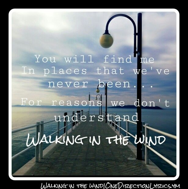 Walking in the wind - One Direction - Made in the A.M. (image @ irisanphoto)