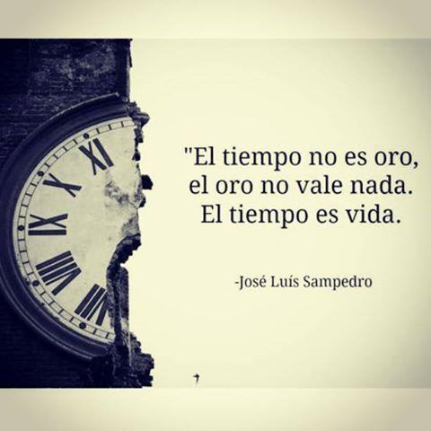 Esta definición de José Luis Sampedro tiene la fuerza de un darse cuenta. Cuando se reconoce que la vida es ese mientras tanto, se valida el tiempo que pasa como cúmulo de vivencias, haceres, estar...