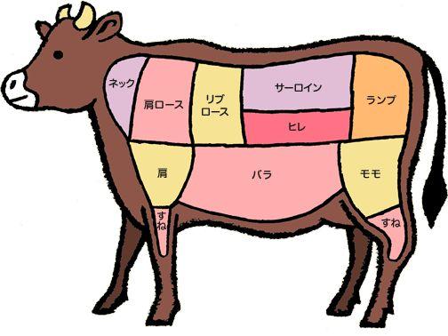 日本ハム | 牛肉の部位