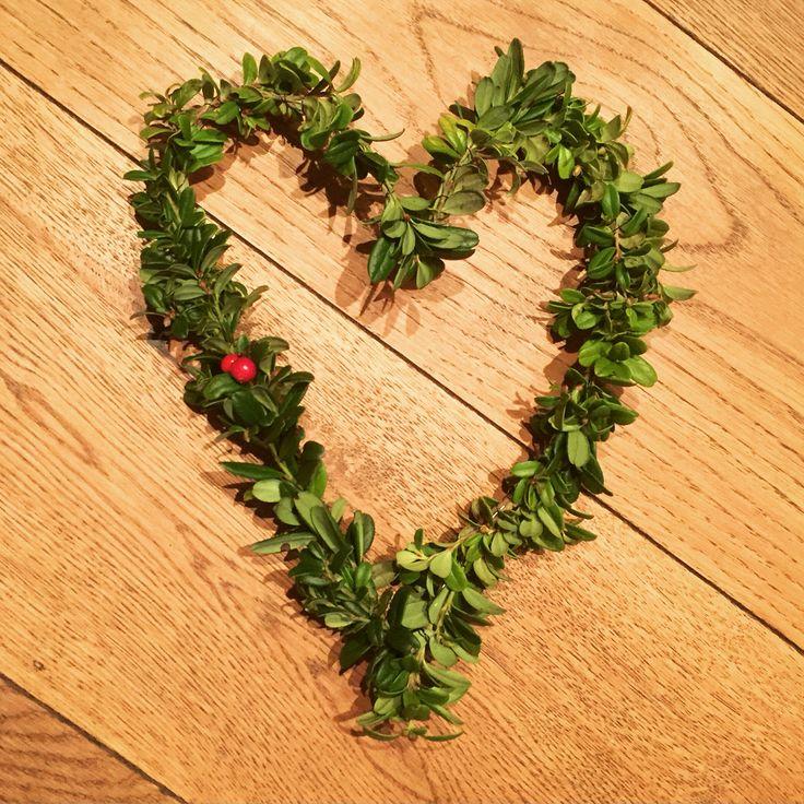 Hjerte av ståltråd og tyttebærlyng
