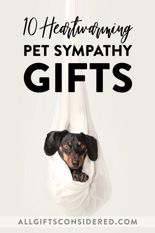 10 Heartwarming Pet Sympathy Gifts All Gifts Considered In 2020 Pet Sympathy Gifts Pet Sympathy Sympathy Gifts