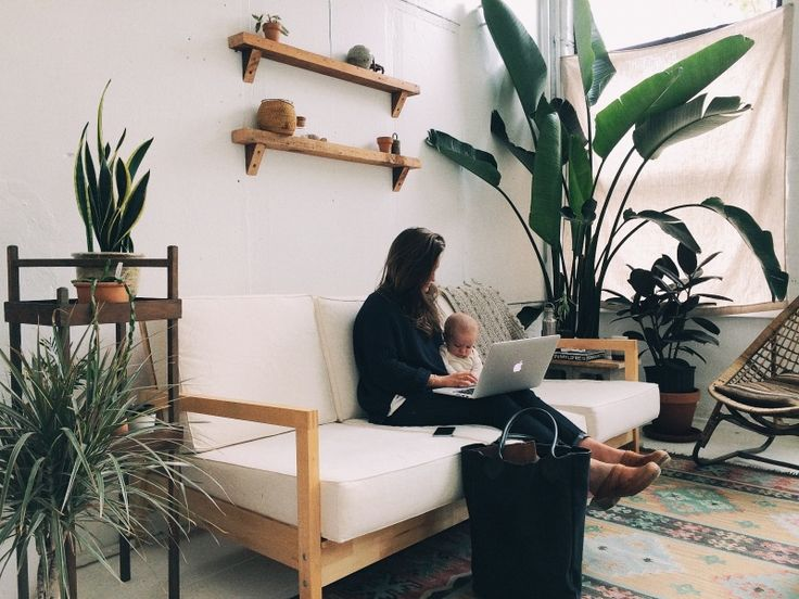 plants + wood shelves + rug
