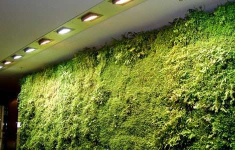 Indoor landscaping from Germany!