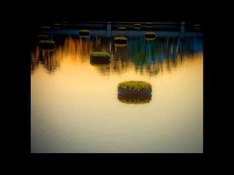 Paul Horn - The Mahabhutas - YouTube