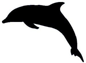 Dolphin Make Up Stencil- 5 Pack by DirectGlow LLC. $4.95. Adheres to skin easily. 5 stencils per purchase. Can be reused. Each stencil measures 2.25 inches x 2.25 inches. These make up stencils are the perfect compliment to any of our blacklight reactive cosmetics. Each piece adheres to the skin with ease. Simply apply your choice of color(s) over the stencil and then peel off to reveal a perfectly shaped work of art!  Each stencil measures 2.25 inches x 2.25 in...