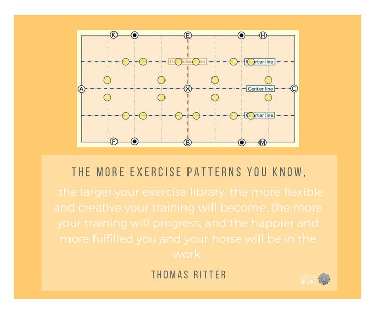 """The more exercise patterns you know, the larger your exercise library, the more flexible and creative your training will become, the more your training will progress, and the happier and more fulfilled you and your horse will be in the work."" - Thomas Ritter artisticdressage.com"