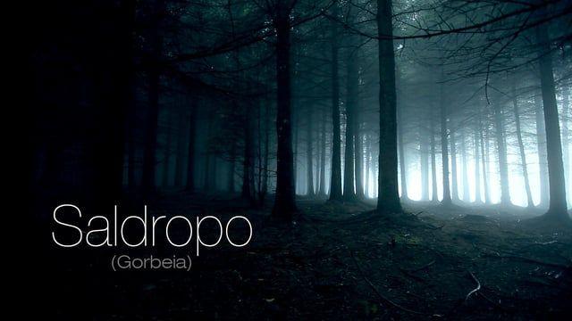 Saldropo