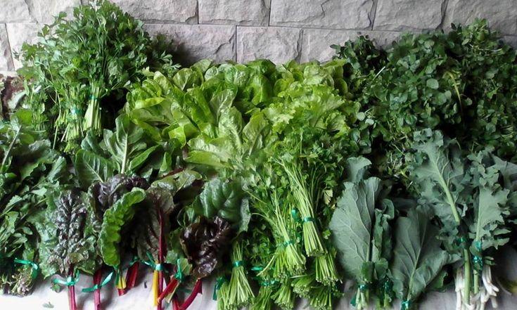 Frutas y verduras a domicilio, una opción práctica y saludable