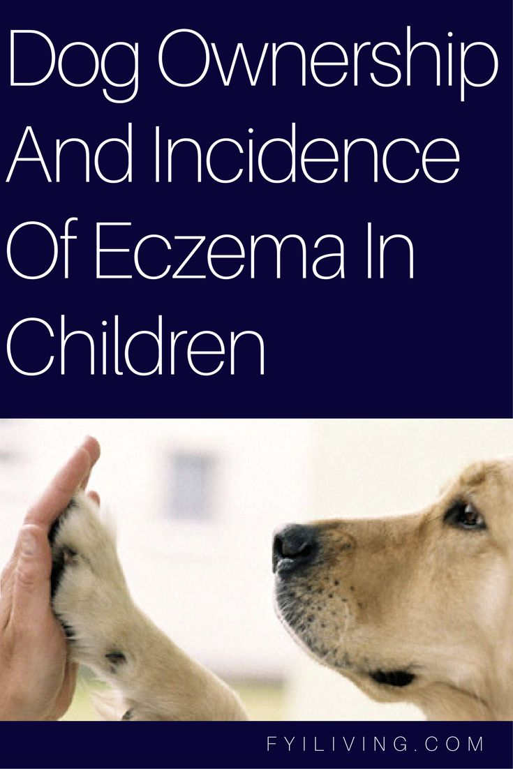 Dog Ownership and Incidence of Eczema in Children - FYI Living