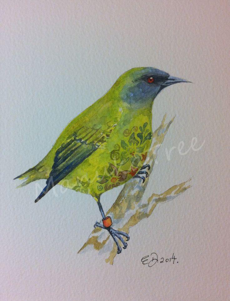 Korimako - NZ native wattlebird - FOR SALE:  http://felt.co.nz/listing/226388/Original-watercolour---Elizabeth-Dodd