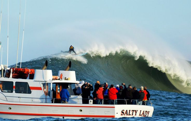 How to experience the Mavericks Big Wave Surf Competition
