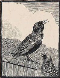 Starling 2 works by Johannes Larsen