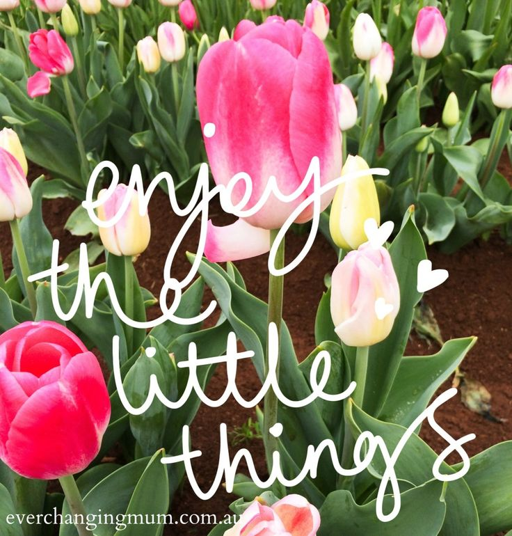 Enjoying the little things - Ever-changing Life of a Mum | Ever-changing Life of a Mum