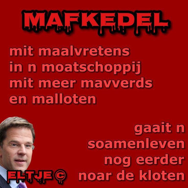 Volgens VVD-leider Rutte heeft de samenleving meer gekke mensen nodig…..